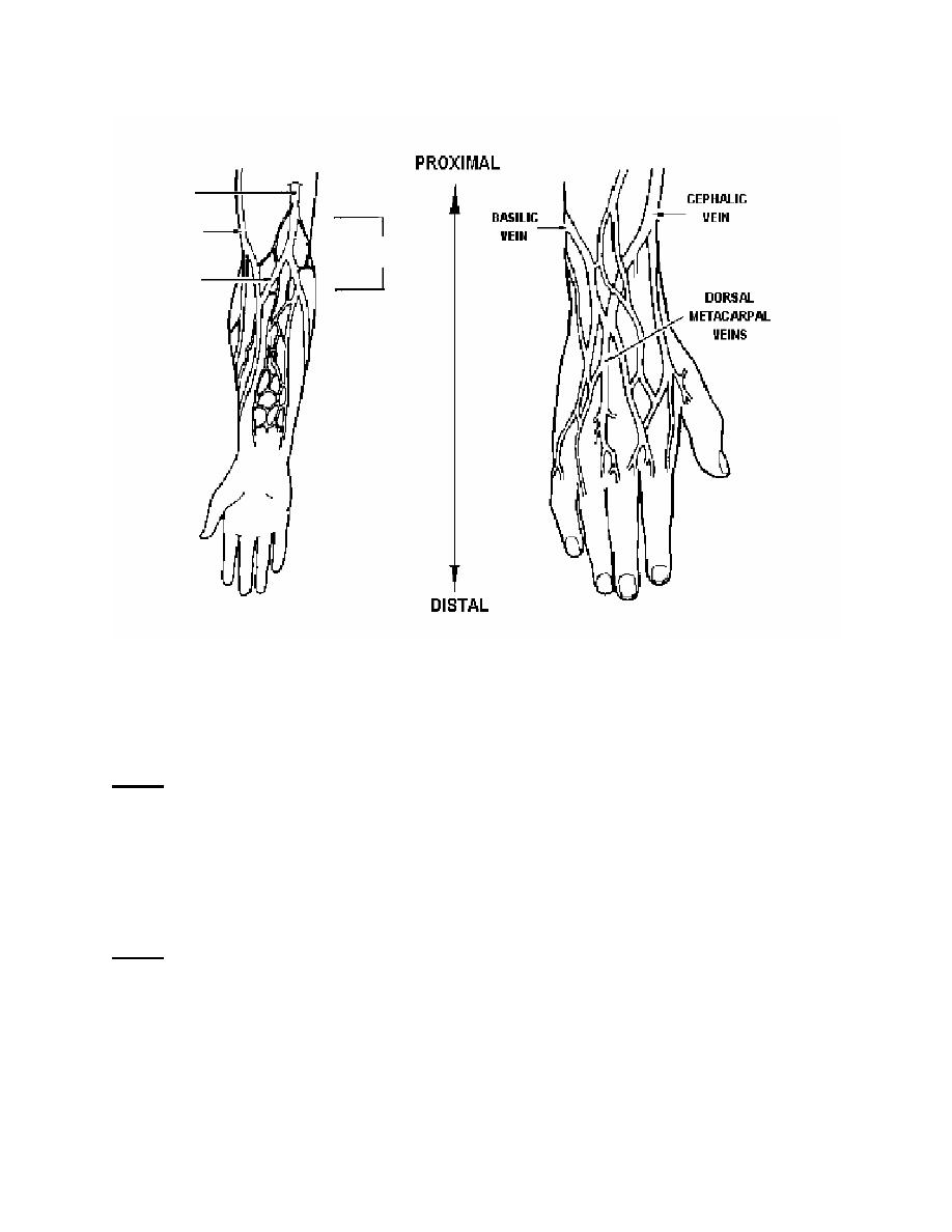 Arm Veins Diagram http://armyintelligence.tpub.com/IS0871/IS08710113.htm